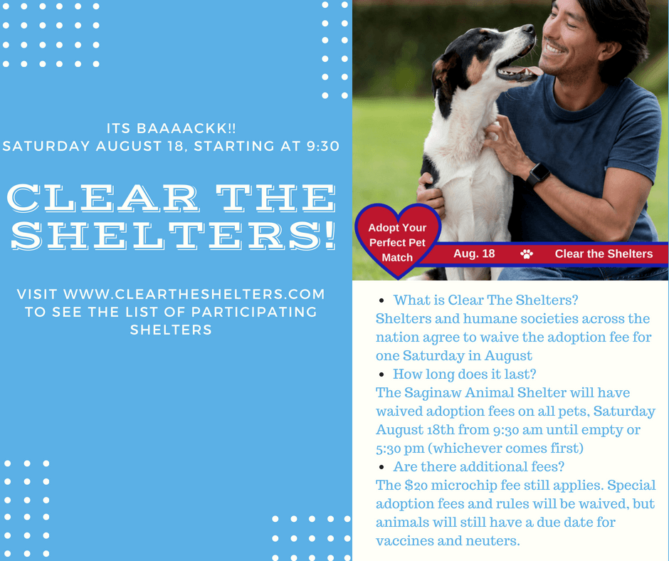 Clear the Shelters 2018